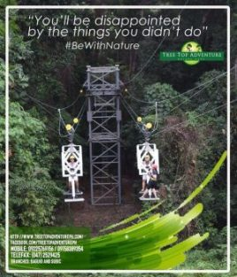 Tree Top Adventure Subic and Baguio Ads