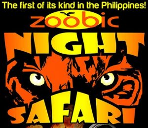 Zoobic Night Safari