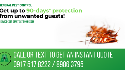 Pest control quezon city